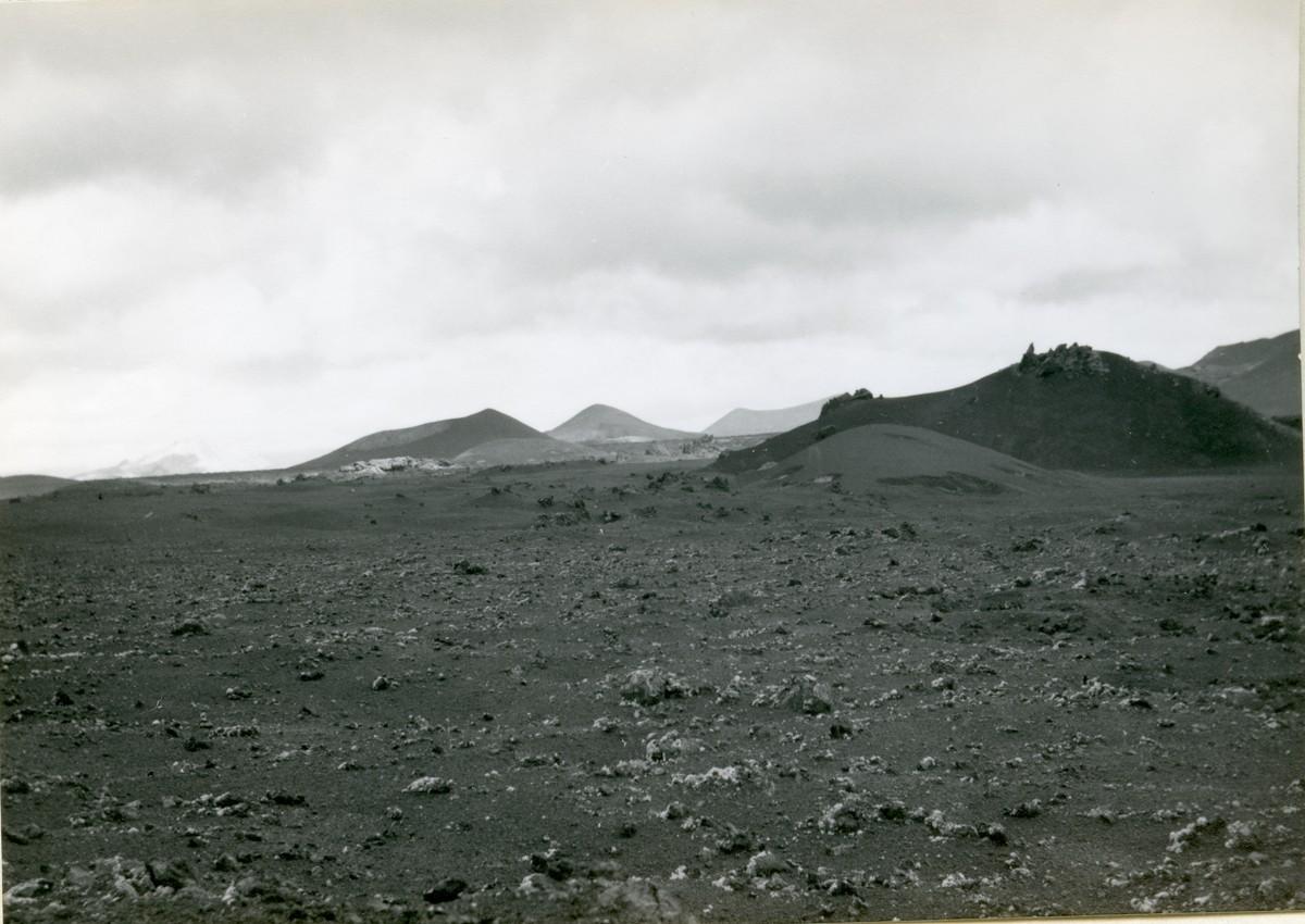 Vistas de las Montañas del Fuego I