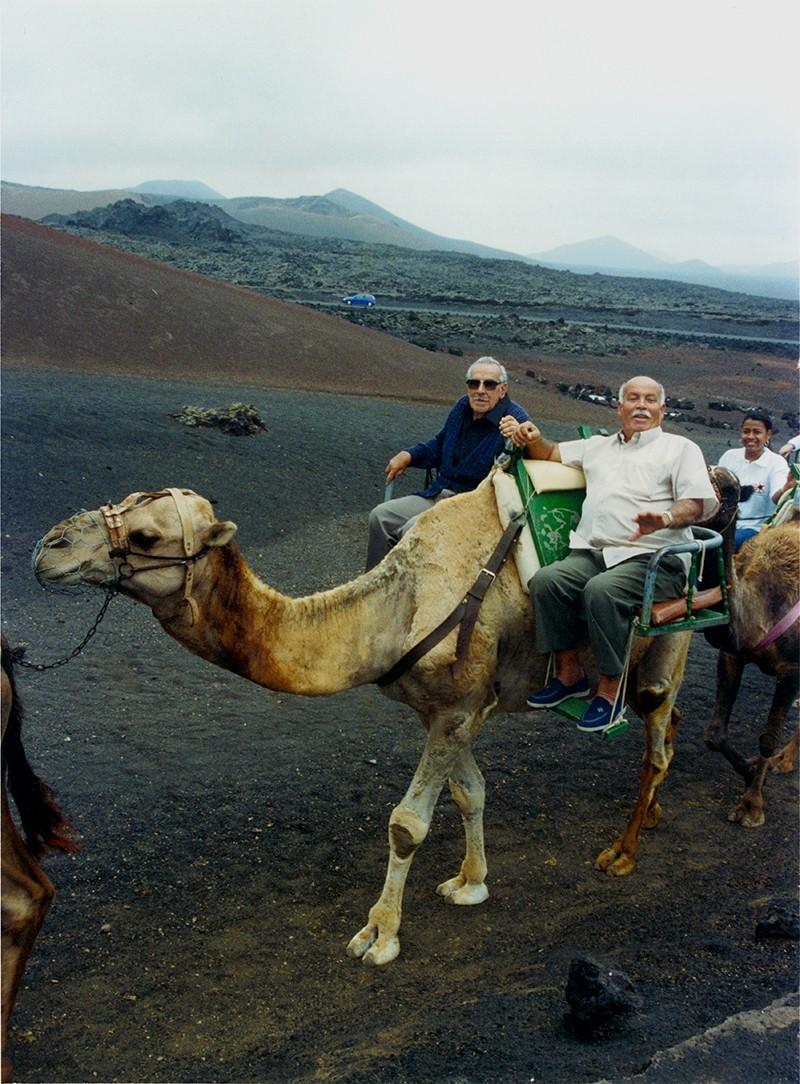 Retrato sobre camello