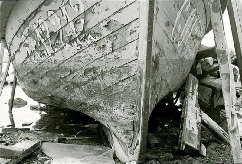 Barco en Puerto Naos I