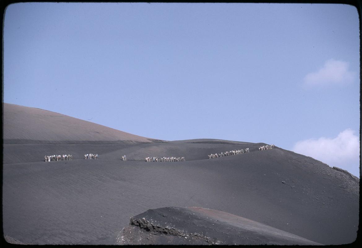 Ruta de camellos en Timanfaya IV