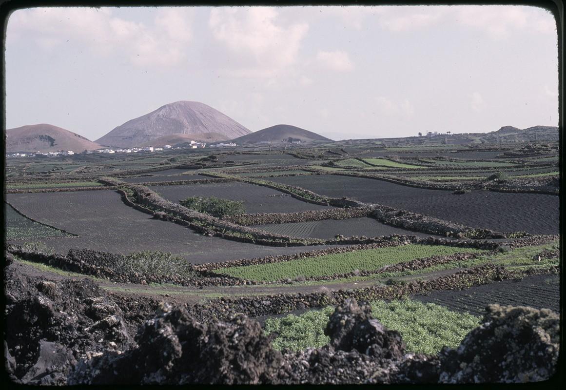 Paisaje agrícola de Lanzarote
