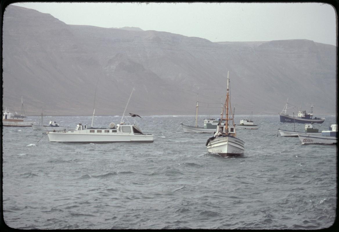 Barcos de La Graciosa II