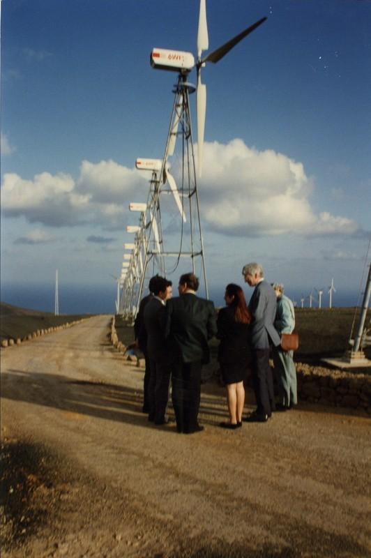 Parque eólico de Los Valles VII