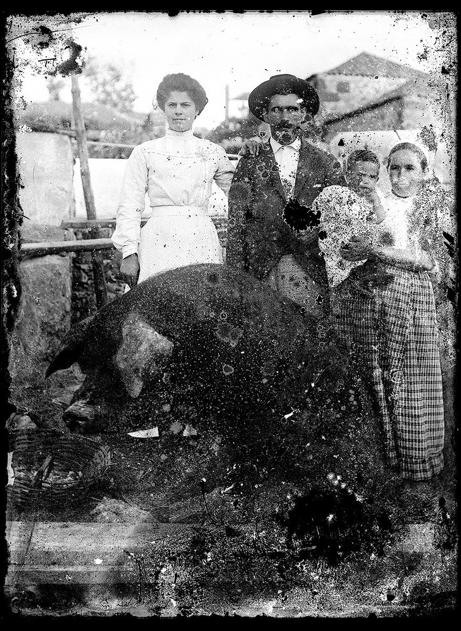 Fanilia con cerdo