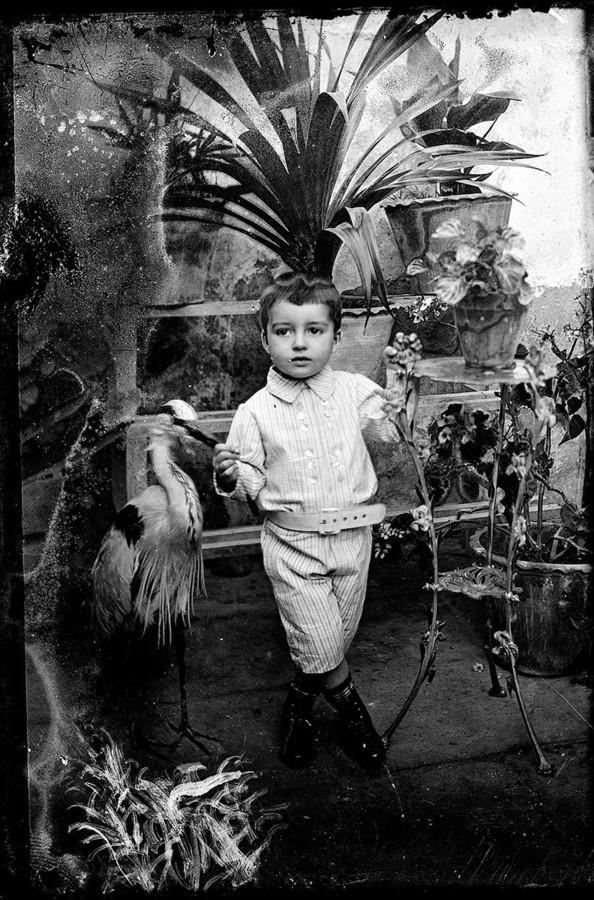 Niño con ave