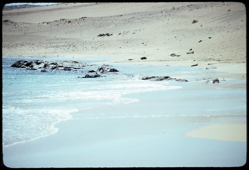 Playa de El Salao X