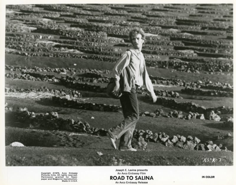 Fotocromo de La ruta de Salina III