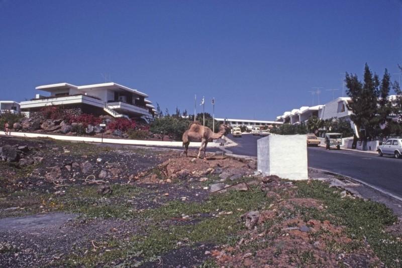 Complejo de apartamentos El Dorado
