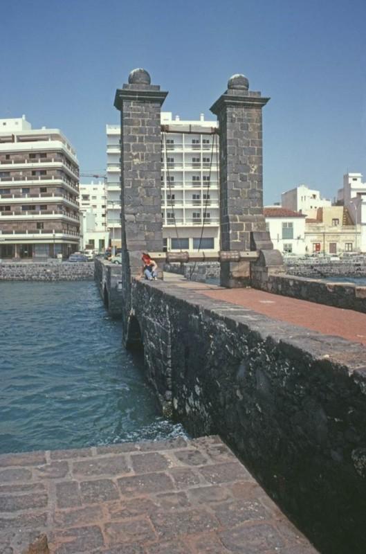 Visita a Arrecife III