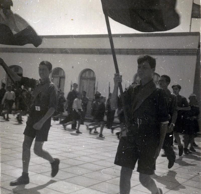 Desfile de Falange II