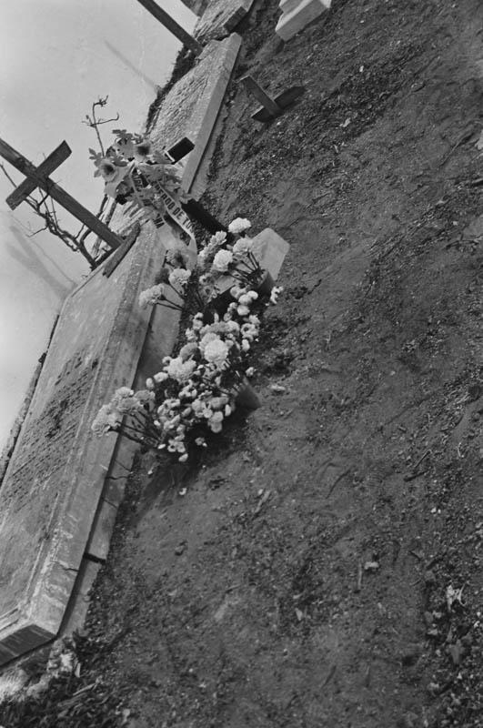 En el cementerio XV