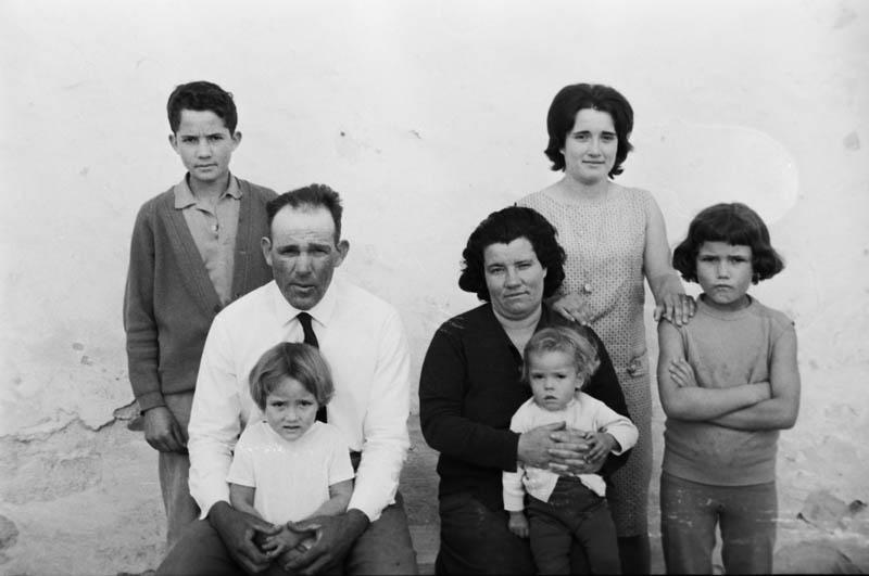 Familia de Teguise VI