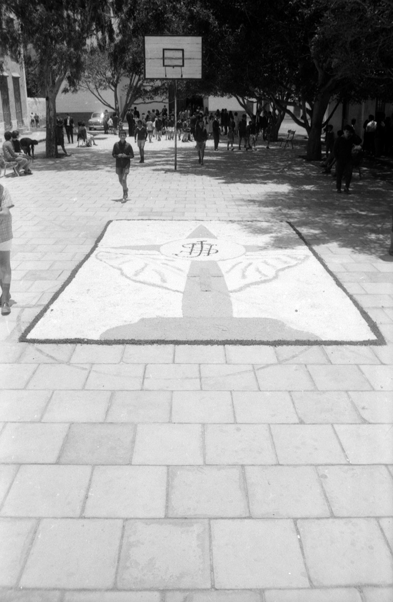 Alfombras del Corpues Christi XII