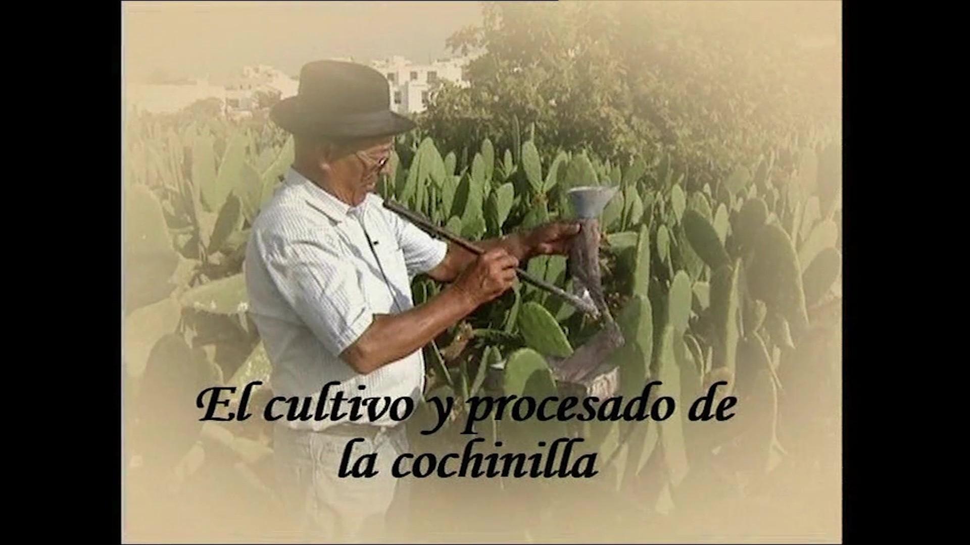 El cultivo y procesado de la cochinilla (2006)