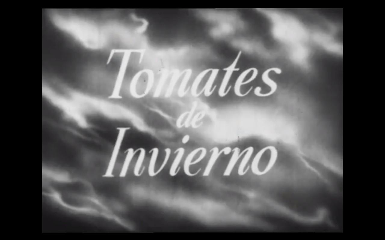 Tomates de invierno (1953)