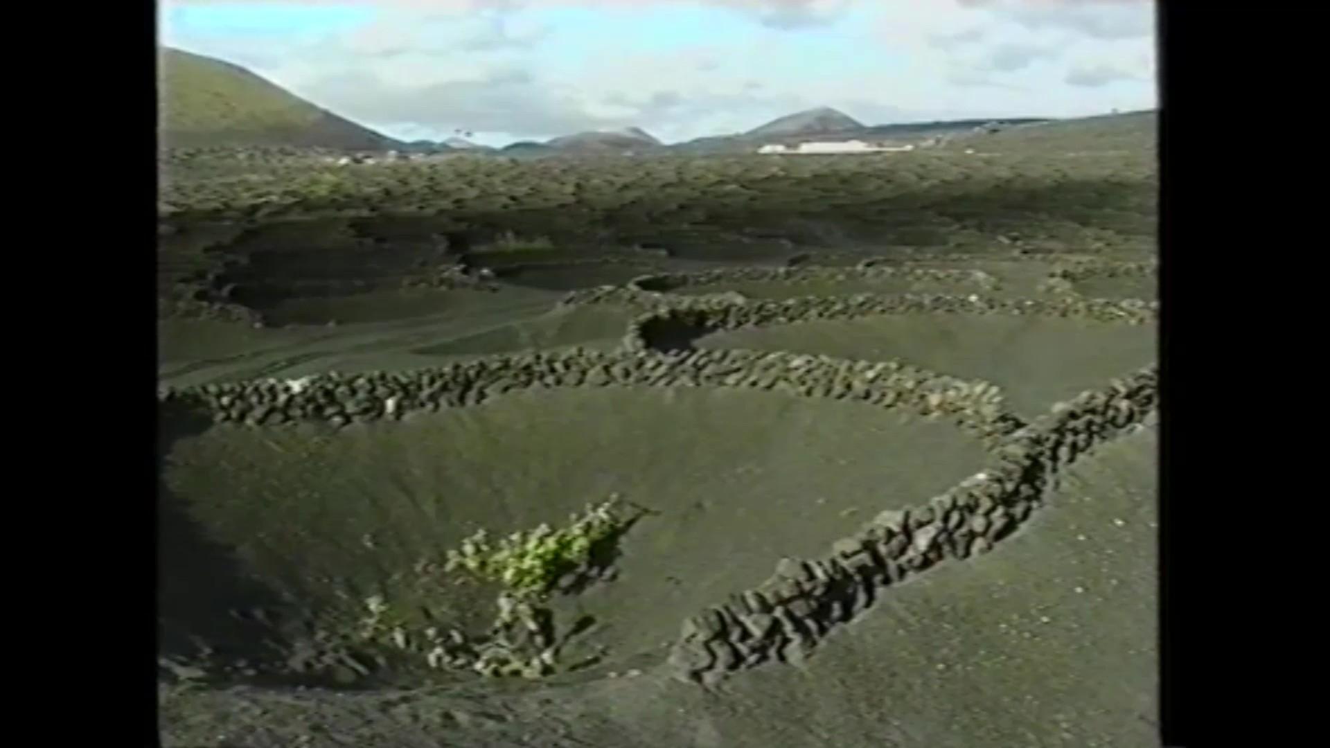 Vino Bodegas El Grifo en 'Lanzarote. Isla de los Volcanes' (1990)