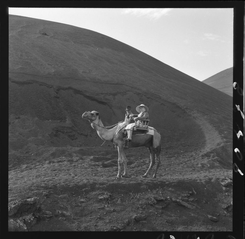 Campesinos en camello I
