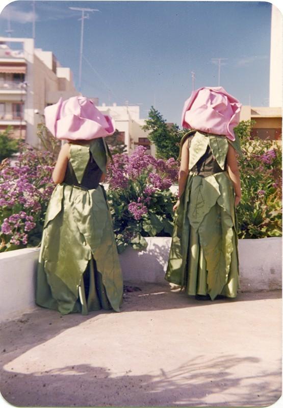 Rosas del carnaval
