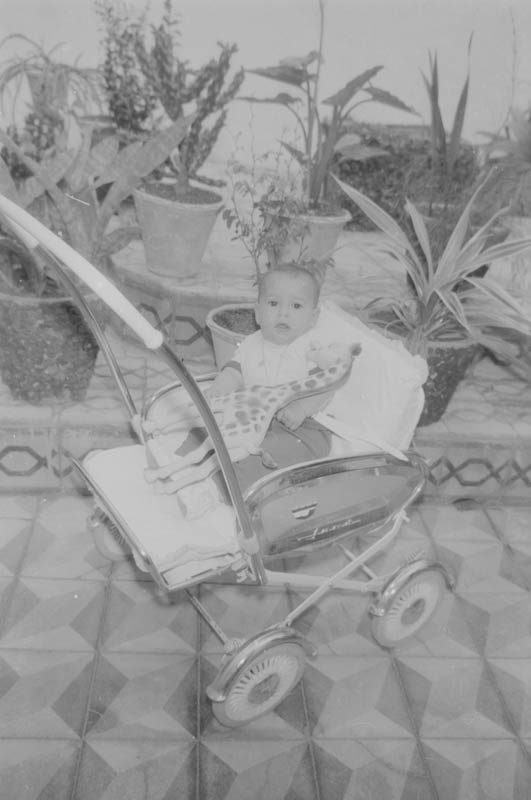 Bebé de Haría III