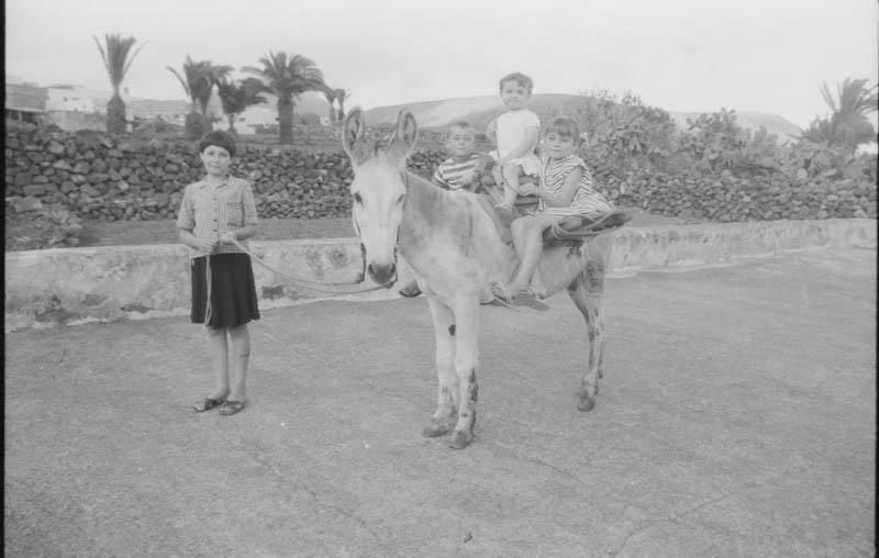 Niños en Burro I