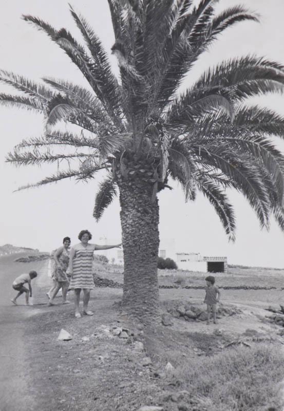 Junto a la palmera