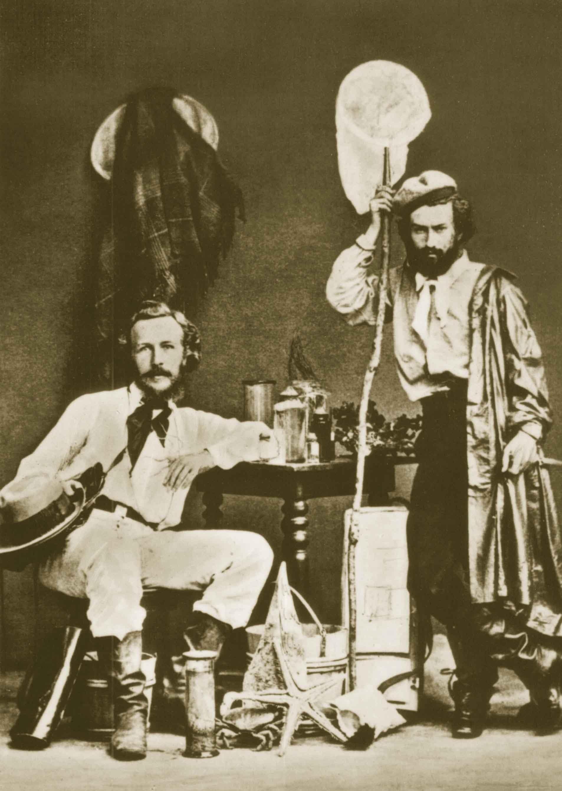 Haeckel en Lanzarote